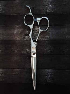 KAMISORI Paladin Professional Haircutting Shears